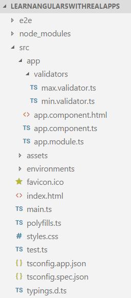 Custom Validators in Angular 6 - Learn Programming with Real
